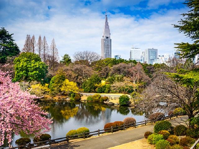 Thưởng ngoạn tuyệt cảnh thiên nhiên Nhật Bản cùng Air Asia